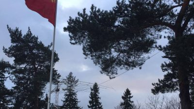 Chinese Institutions and Investment Arm in Finland
